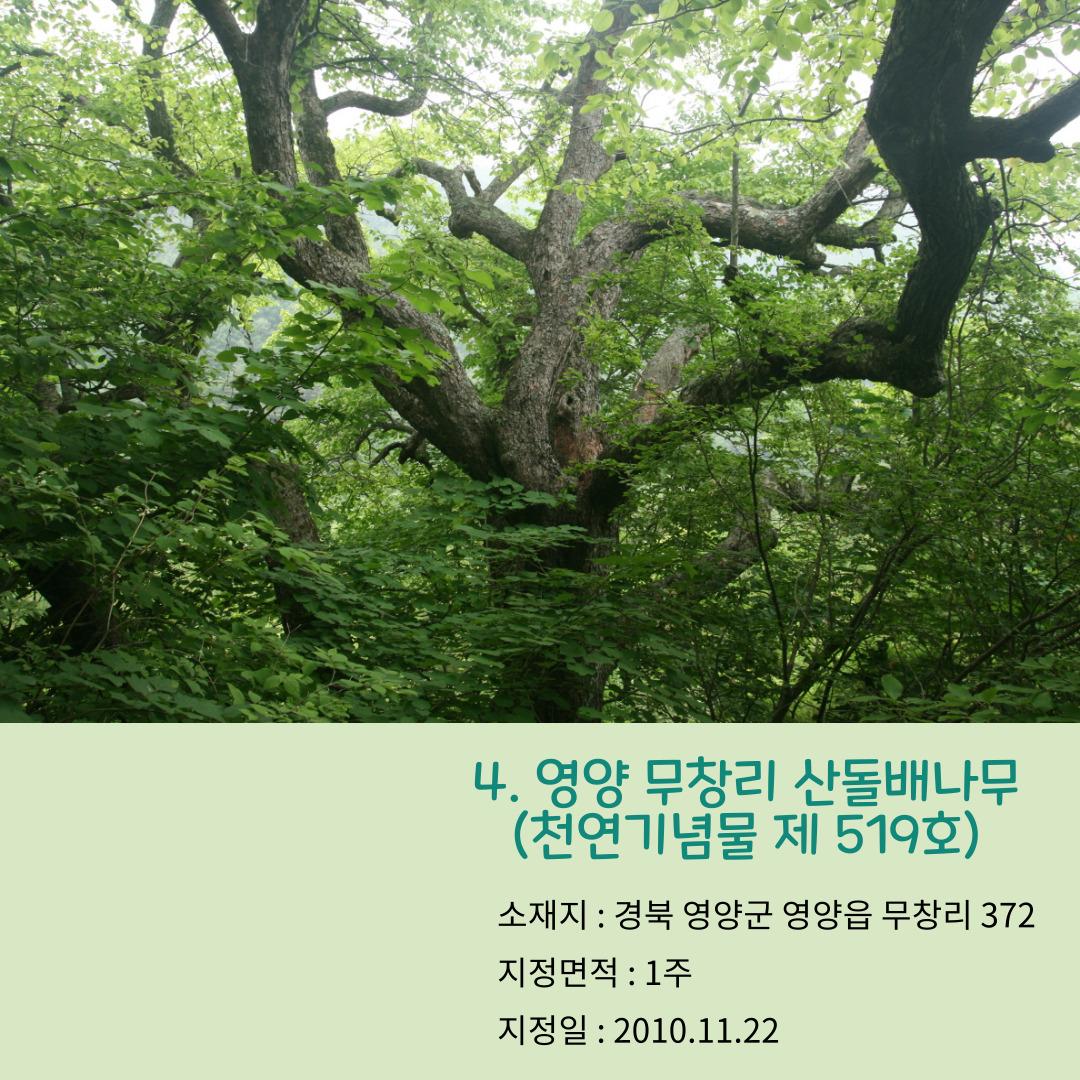 18ffdb4cee5420c535218be8cd9611f8_1621496189_52.jpg